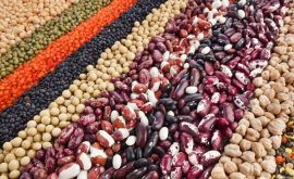 Bổ sung dinh dưỡng ăn chay tốt nhất từ các loại hạt